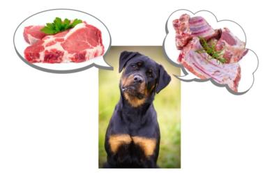 La Dieta Cruda De Tu Perro: Cómo Equilibrar Calcio Y Fósforo