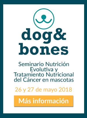 Seminario Dr Billinghurst en España